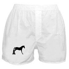 saddle horse Boxer Shorts