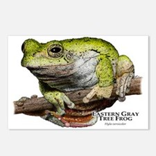 Eastern Gray Tree Frog Postcards (Package of 8)
