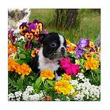 Boston terriers Tile Coasters