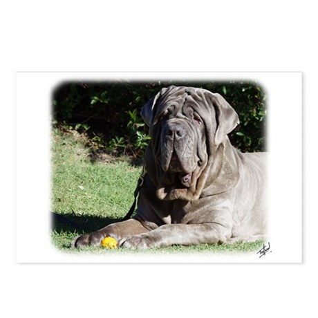 Neapolitan Mastiff AA018D-069 Postcards (Package o