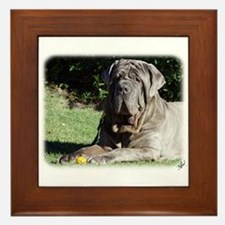 Neapolitan Mastiff AA018D-069 Framed Tile