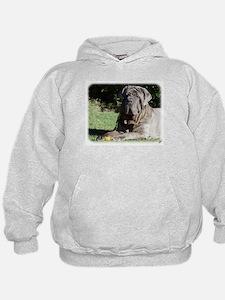 Neapolitan Mastiff AA018D-069 Hoodie