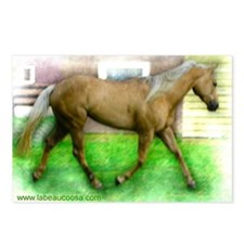 Palomino Postcards (Package of 8)