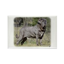 Neapolitan Mastiff AA021D-045 Rectangle Magnet (10