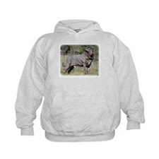 Neapolitan Mastiff AA021D-045 Hoodie