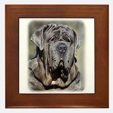 Neapolitan Mastiff AA021D-048 Framed Tile