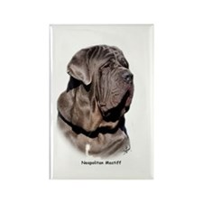 Neapolitan Mastiff 9Y393D-045 Rectangle Magnet (10