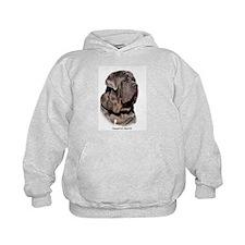 Neapolitan Mastiff 9Y393D-045 Hoodie