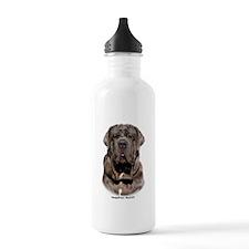 Neapolitan Mastiff 9Y393D-047 Water Bottle