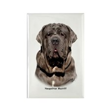 Neapolitan Mastiff 9Y393D-047 Rectangle Magnet (10