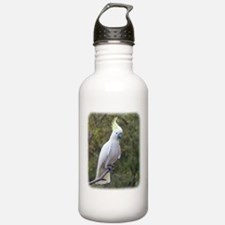 Sulphur Crested Cockatoo 9Y319D-073 Sports Water Bottle