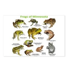 Frogs Species of Minnesota Postcards (Package of 8