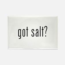 Got salt? Rectangle Magnet