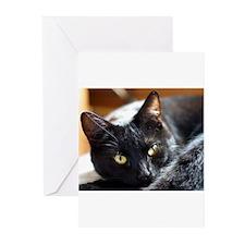 Sleek Black Cat Greeting Cards (Pk of 10)