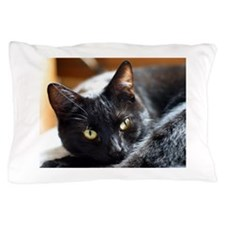 Sleek Black Cat Pillow Case