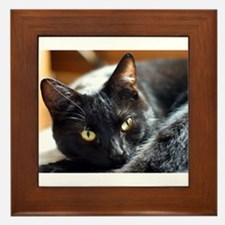 Sleek Black Cat Framed Tile