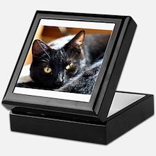 Sleek Black Cat Keepsake Box
