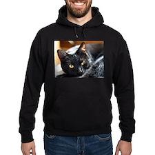 Sleek Black Cat Hoodie