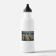 Cheetah Love Water Bottle