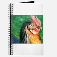 Chicken Image Journal