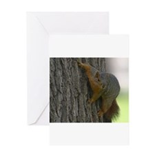 Squirrel Hugging a tree Greeting Card