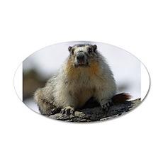 Grumpy Groundhog 22x14 Oval Wall Peel