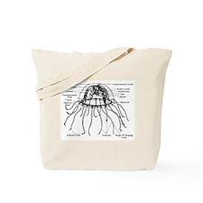 Diagram Of Jellyfish Tote Bag