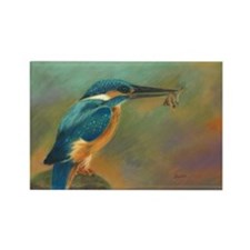 Common Kingfisher Rectangle Magnet Magnets