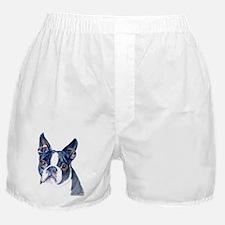 Funny Boston terrier Boxer Shorts