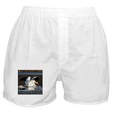 Pelican Landing, Boxer Shorts