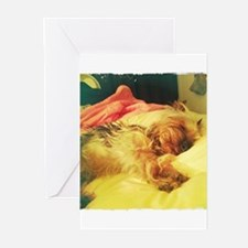 Unique Cute dog sleeping Greeting Cards (Pk of 10)