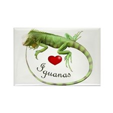 Love Iguanas Rectangle Magnet