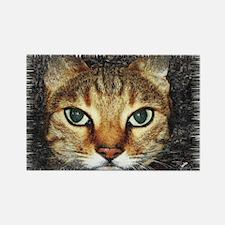 cat Rectangle Magnet