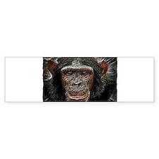 chimp Bumper Sticker