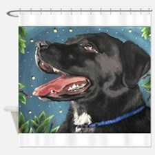 Sassy and the Fireflies Shower Curtain
