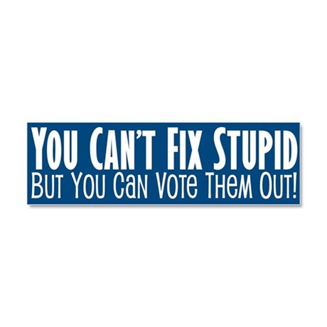 You can't fix stupid... Car Magnet 10 x 3