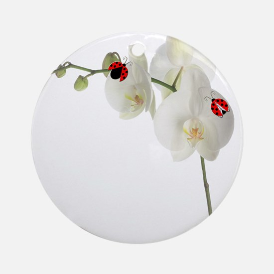 Lady Bug Orchid Ornament (Round)