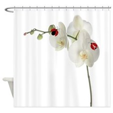 Lady Bug Orchid Shower Curtain