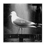 seagulls01 Tile Coaster