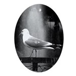 seagulls01 Oval Ornament