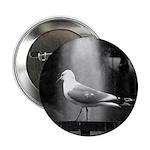 seagulls01 Button