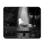 seagulls01 Mousepad