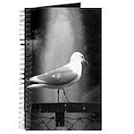 seagulls01 Journal