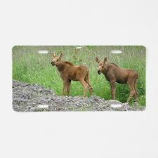 Twin Calves #01 Aluminum License Plate