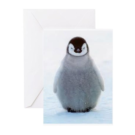 Baby Penquin Greeting Cards (Pk of 20)