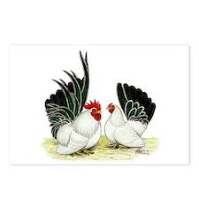 Japanese Black White Bantams Postcards (Package of