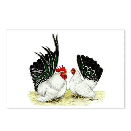 Japanese Black White Bantams Postcards (Package of