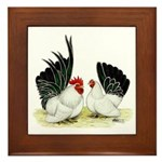 Japanese Black White Bantams Framed Tile