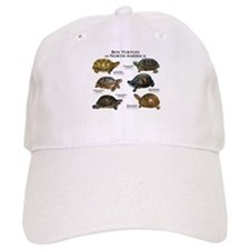 Box Turtles of North America Baseball Cap
