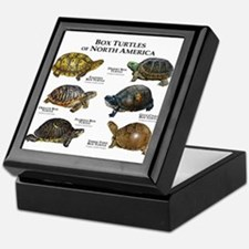Box Turtles of North America Keepsake Box